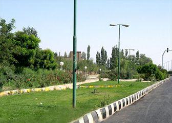 طراحی ویژه فضای سبز بزرگراه امام علی(ع)