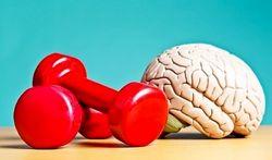 راهکارهای ساده تقویت حافظه را بشناسیم