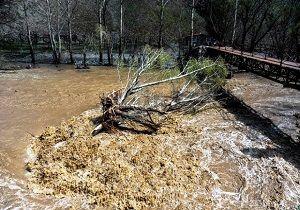 فوت 5 تن در پی سیلاب های اخیر