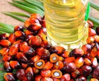 اصرار تجار اندونزی به فروش «روغن پالم» به ایران + سند