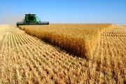 بحران کشاورزی جدی است/ درها برای واردات دوباره باز میشود؟