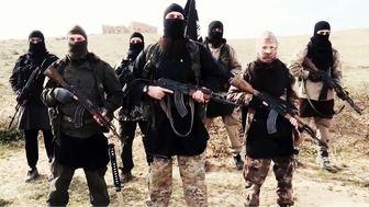 حضور  7000 داعشی در عراق و سوریه
