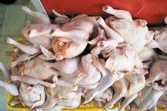 توزیع گوشت، مرغ و تخممرغ به نرخ دولتی آغاز شد