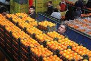 فراوانی میوه با قیمت مناسب