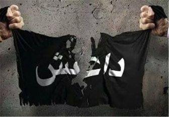 مسئول اداری داعش در شرق عراق دستگیر شد