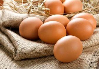 """آمریکایی ها هم به گرانی """"تخم مرغ"""" مبتلا شدند"""