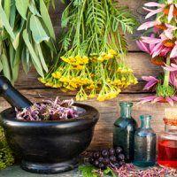 ۶ ترکیب بینظیر گیاهی برای جذب بیشتر آهن را بشناسید