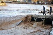 شهر گوریه پس از وقوع سیلاب/ عکس