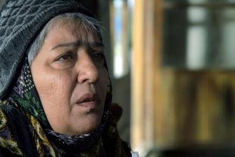 محمدرضا داودنژاد بازیگر جدید «مشمشه» شد