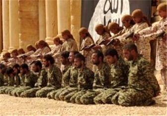داعش قهرمان کیکبوکس جهان را اعدام کرد