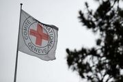 اعلام آمادگی صلیب سرخ جهانی برای آزادی زندانیان در یمن