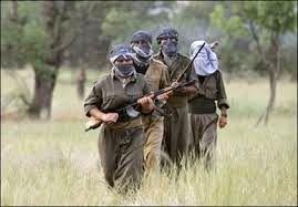 «پ.ک.ک» 12 نظامی ترکیه را کشت