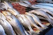 مصرف سموم سرطانزا در مزارع پرورش ماهی چقدر واقعیت دارد؟