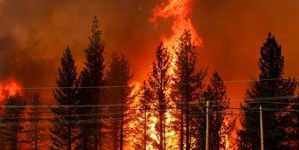 تخلیه اجباری مناطق مختلف کالیفرنیا به علت آتشسوزی +عکس