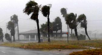 میزان خسارتهای ناشی از توفان هاروی