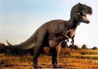 دایناسورهایی که مواد مخدر مصرف میکردند!