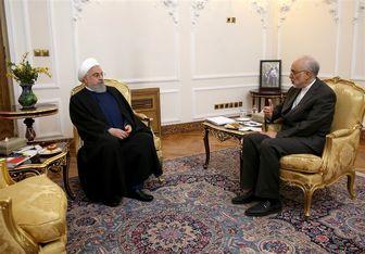دیدار رئیس سازمان انرژی اتمی با روحانی