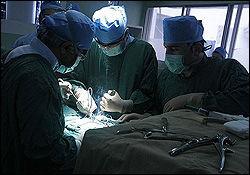 درمان قطع نخاع با سلولهای جنینی
