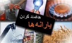 ارجاع طرح «اصلاح ساختار هدفمندی یارانهها» حزب اسلامی کار به وزارت کار