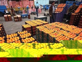 سرنخ ورود میوههای قاچاق به کشور
