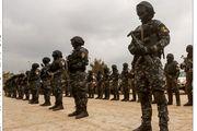 سرکرده «گروه تروریستی سیناء» مصر کشته شد