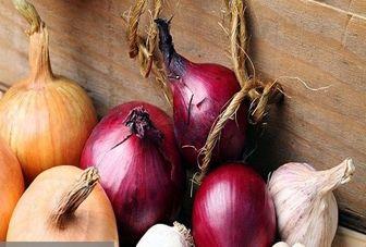 4 راهکار ساده برای رهایی از شَر بوی بد سیر و پیاز