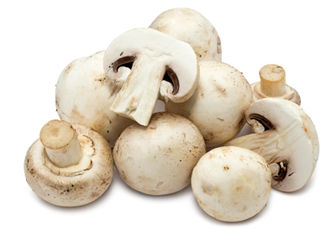 اختصاص ۲۵ درصد تولید قارچ به صادرات