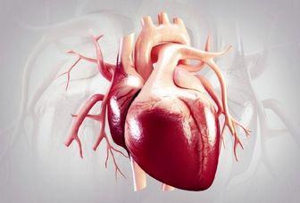 احیای بافت قلب آسیب دیده بر اثر کمبود اکسیژن