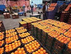 قیمت پرتقال شب عید تعیین شد