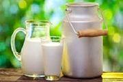 افزایش قیمت شیر ارتباطی به میزان تولید ندارد