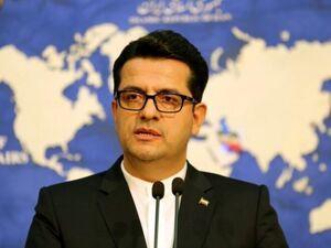 ابراز تأسف سخنگوی وزارت خاجه از سانحه سقوط هواپیمای اوکراینی