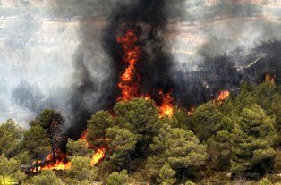 هشدار یگان حفاظت منابع طبیعی