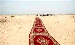 پهن کردن فرش قرمز گرانقیمت برای عبور وزیر در صحرا