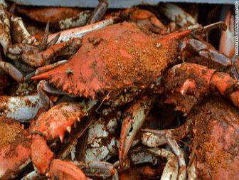 ۵ @ ۵ - Blue crabs ۱۰۱