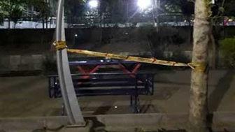 حادثه برق گرفتگی پارک لاله تهران