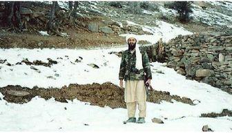"""سندی مبنی برفوت """" اسامه بن لادن """" وجود ندارد!"""