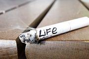 اثرات مصرف سیگار و الکل بر سرطان سر و گردن