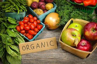 با مصرف مواد غذایی ارگانیک از ابتلا به این بیماری مرگبار جلوگیری کنید!