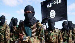 داعش سومالی هم با القرشی بیعت کرد