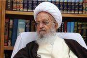 آیتالله مکارم شیرازی: باید غذاها را کاهش داد و بیشتر آنها را بجویم