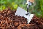 راهکار صحیح برای کود دهی گیاهان را بدانید
