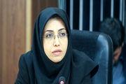 لزوم بازنگری مجدد بر عملکرد سراهای محله تهران