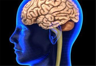 ۱۴ قانون که پیروی از آنها سلامت مغز شما را تضمین میکند