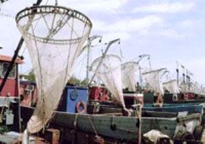 اعتراض صیادان بوشهری به کاهش قدرت موتور قایقها