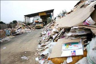 جمع آوری روزانه ۸ هزار تن زباله از معابر عمومی کربلا