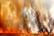 داعش عراق را به آتش کشید