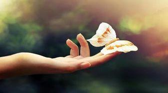 رزق معنوی و غذایی سالم برای روح چیست؟
