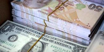 نرخ تعادلی ارز ۸ هزار تومان است