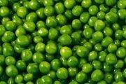 فواید و مضرات گوجه سبز چیست؟