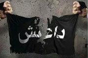 یکی از سرکردگان داعش در شمال سوریه به هلاکت رسید